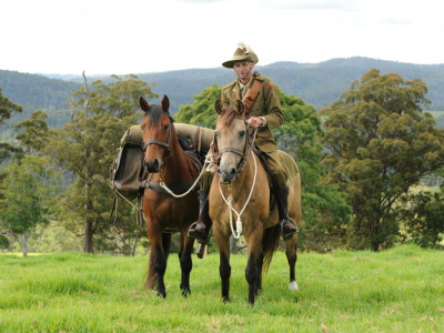 Dorrigo-Light-Horse-624