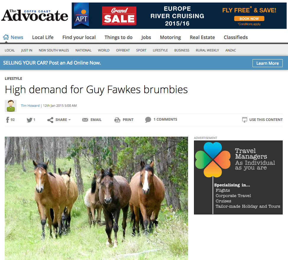 High demand for Guy Fawkes brumbies